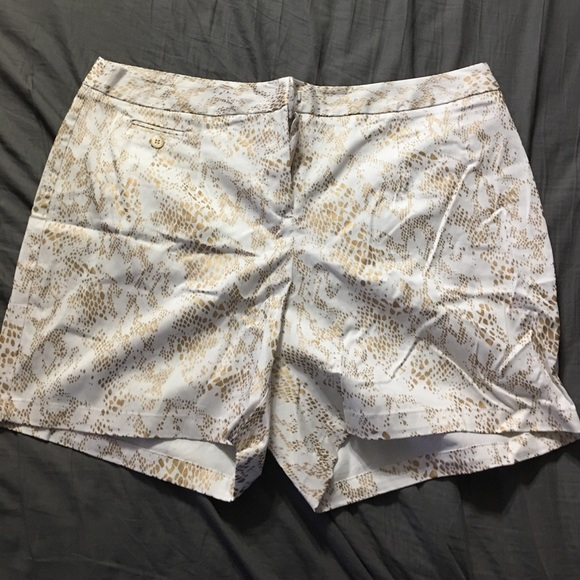 Cato Pants - Cato Shorts